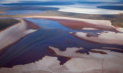 11. <strong>Richard Woldendorp</strong>, <em> Aerial, Lake Carnegie north, after the rains, Western Australia</em>, 2009, 1/7<br> inkjet colour prints, 79 x 118 cm<br>$5150