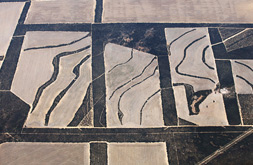2. <strong>Richard Woldendorp</strong>, <em> Aerial, farmland with wildlife corridors, east of Southern Cross, Western Australia</em>, 2009, 1/7<br> inkjet colour prints, 83 x 119 cm<br>$5250